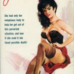 Pin-Up на обложках книг